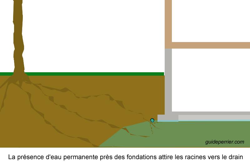 drainage terrain argileux sol de fondation argile. Black Bedroom Furniture Sets. Home Design Ideas