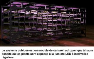 1_module-urbans-barns
