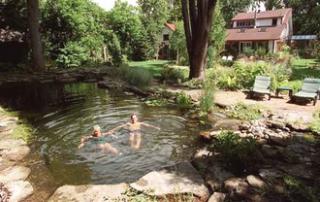 piscine_nature