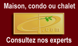 experts conseils