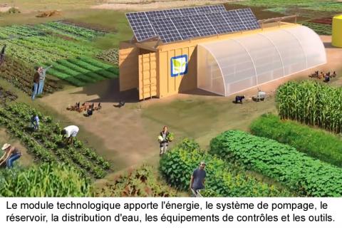 agriculture conteneur