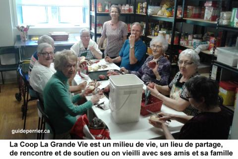 Maisons pour aînés: vieillir en société pour le bonheur et la santé