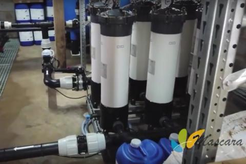 dessalement witsans